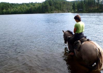 rivière à cheval